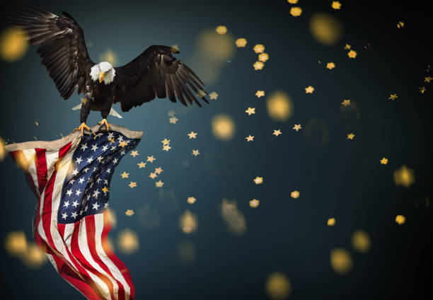 bald eagle flying with american flag - independence day stock photos and pictures