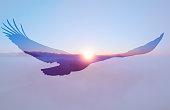 istock Bald eagle on sunset sky background. 965210336