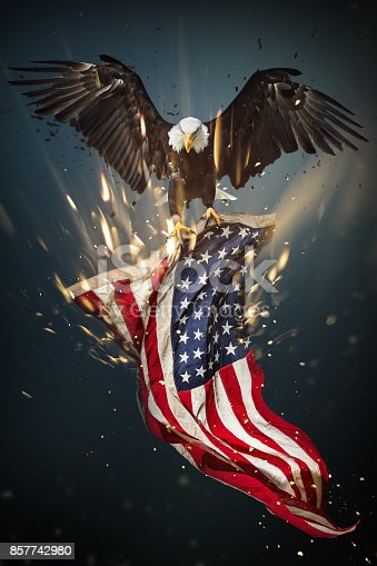 istock Bald Eagle with American flag 857742980