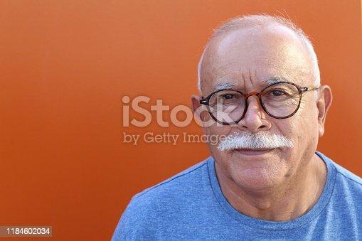 Bald senior man looking at camera.