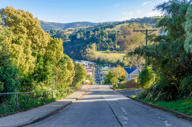 Baldwin Street which is located in Dunedin,New Zealand is the world steepest street in the world. stock photo