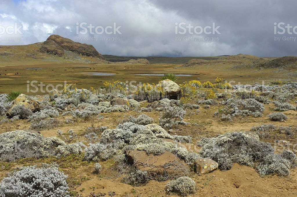 Bale mountains, Ethiopia stock photo