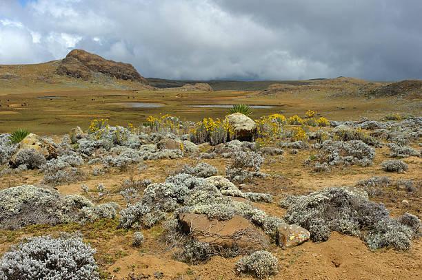 Bale mountains, Ethiopia stock photo