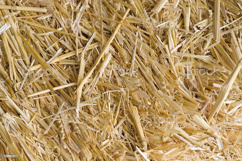 Bale of hay royalty-free stock photo