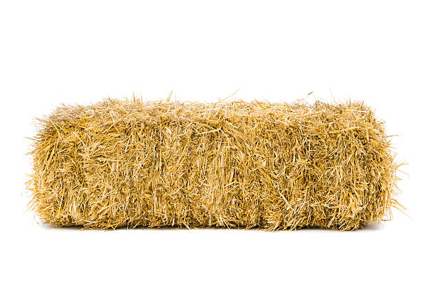 bale of hay - aluxum stock pictures, royalty-free photos & images