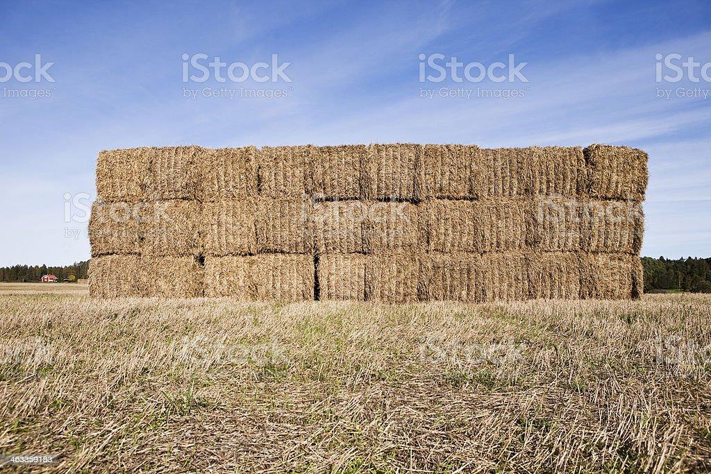 Bale of Haystack stock photo