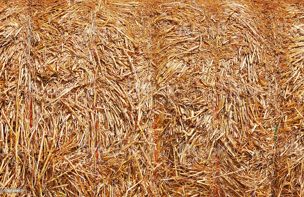 Bale of straw close-up stock photo