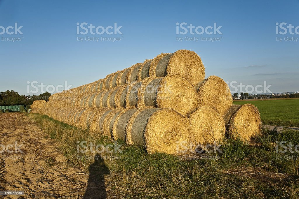 bale of straw in autumn royalty-free stock photo