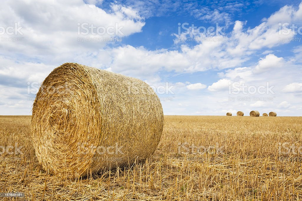 Bale of Straw stock photo