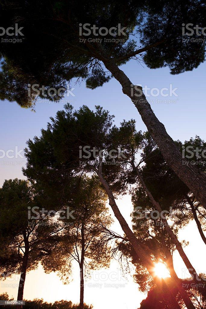 Balearian sunset stock photo