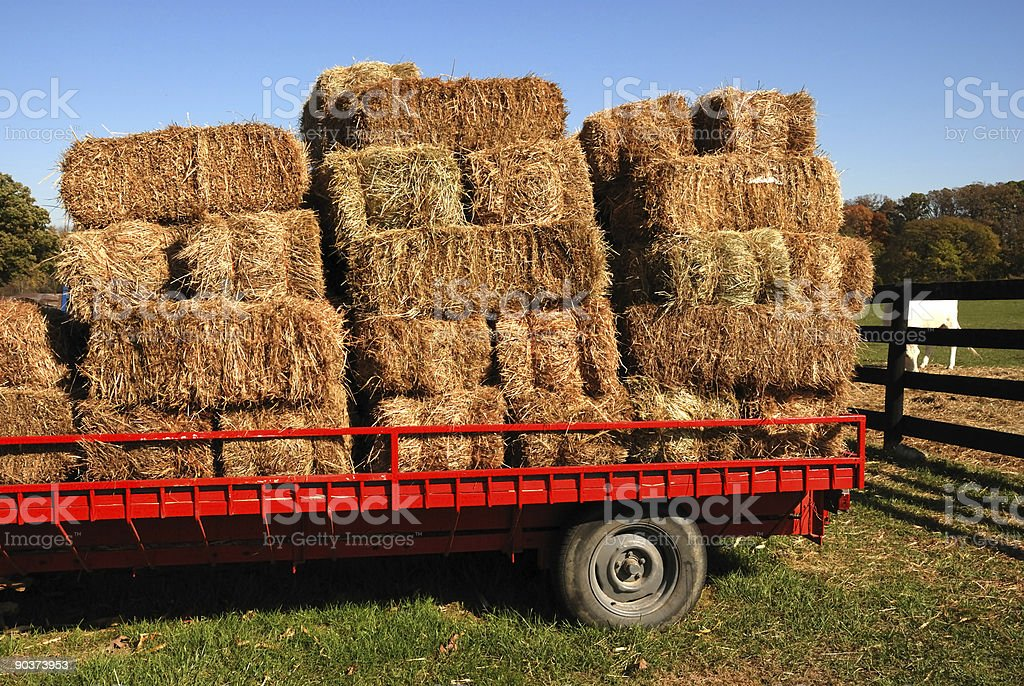 Bales of hay on flatbed truck royalty-free stock photo