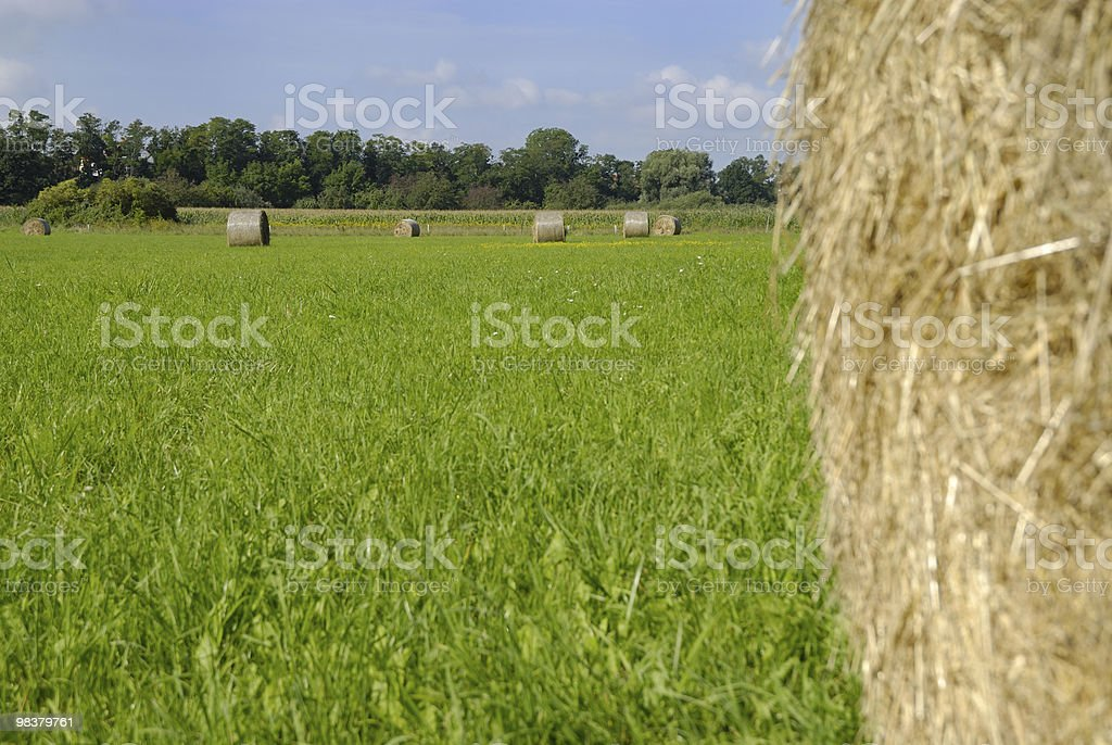 Bales of hay - series royalty-free stock photo
