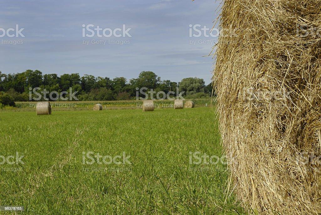 Bales of hay - series royalty-free stock photo