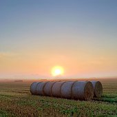 The first rays of the sun rise in the background.  Moist air creates fog. In the foreground is a row of bales of straw.