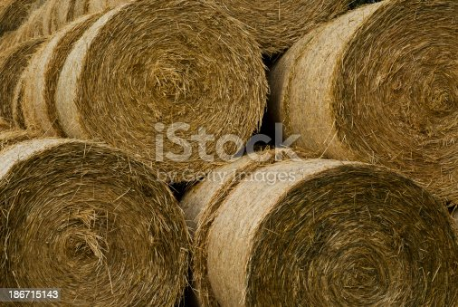 A lot of bales of straw
