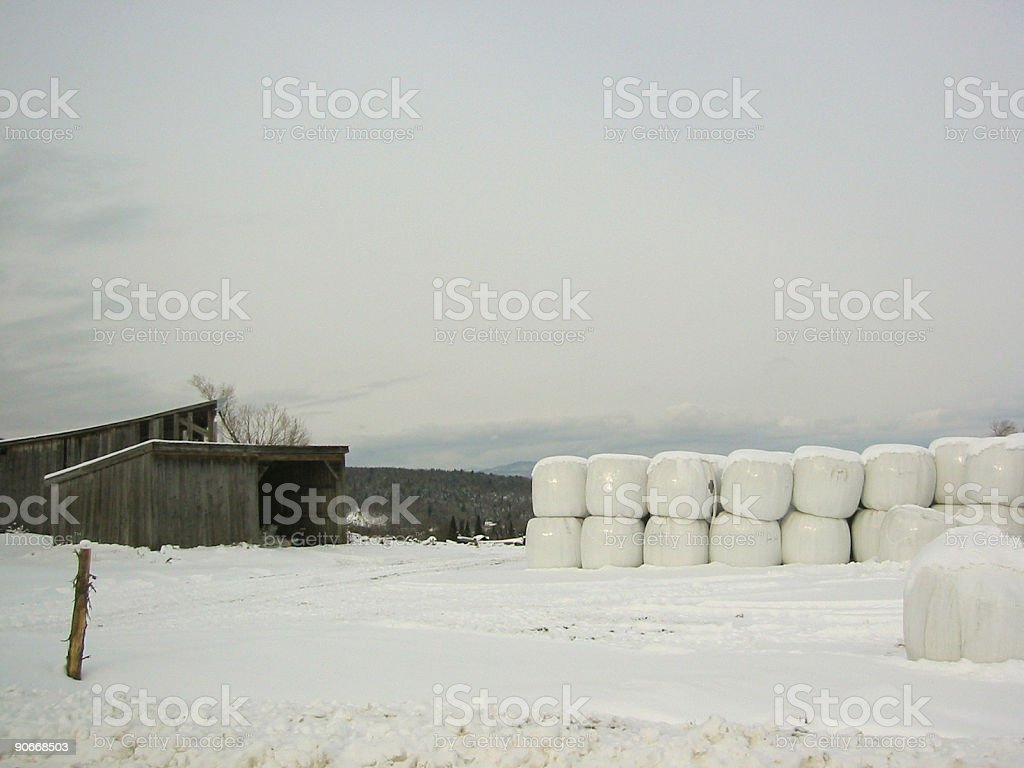 Bales Stacked in Meadow royalty-free stock photo