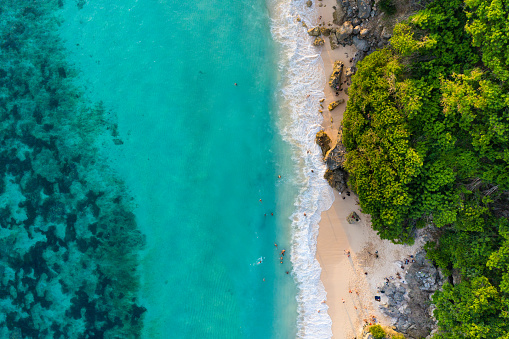 Beach scene from above - blue ocean and palm trees. Aerial drone shot.