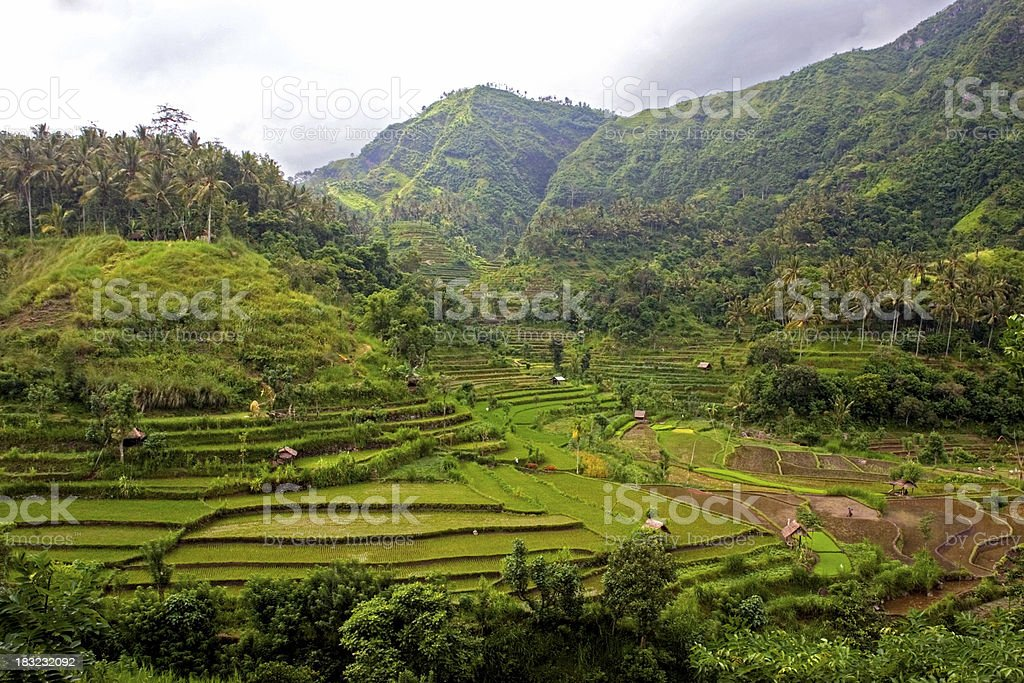 bali indonesia landscape royalty-free stock photo