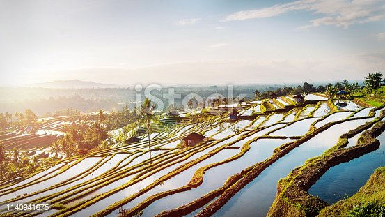 Bali Rice Terraces. The beautiful and dramatic rice fields of Jatiluwih in southeast Bali have been designated the prestigious UNESCO world heritage site.