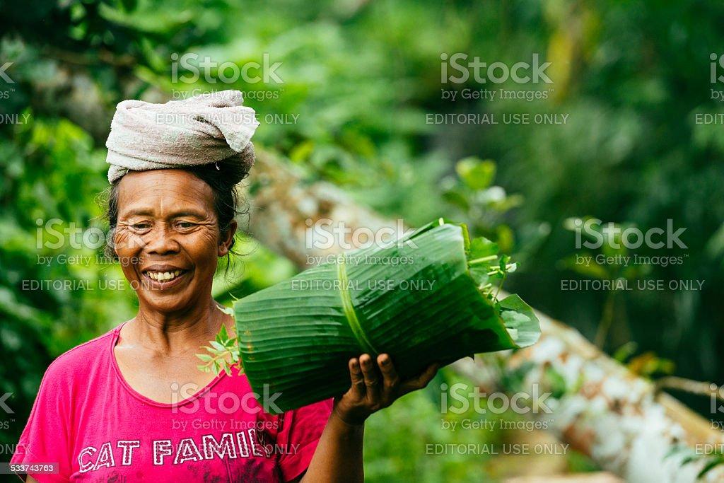 Balinese Farm Woman Working Jatiluwih Rice Terrace Indonesia stock photo