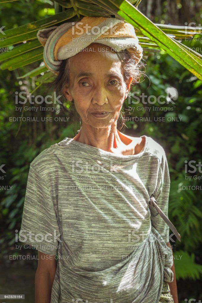 Balinese woman carrying leafs on the head stock photo