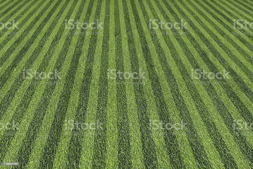 ball field stock photo