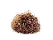 istock A ball of fur. 1296889743