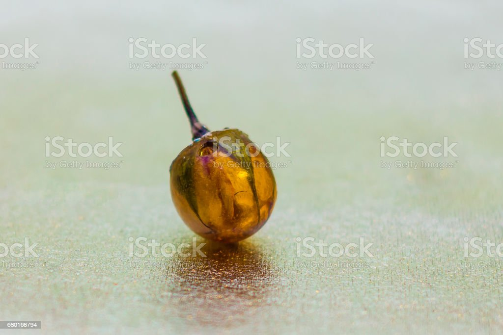 Ball shaped crystal made of epoxy resin with rose stock photo