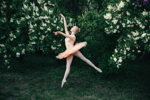 Ballerina dancing outdoors classic ballet poses in flowers landscape stock photo
