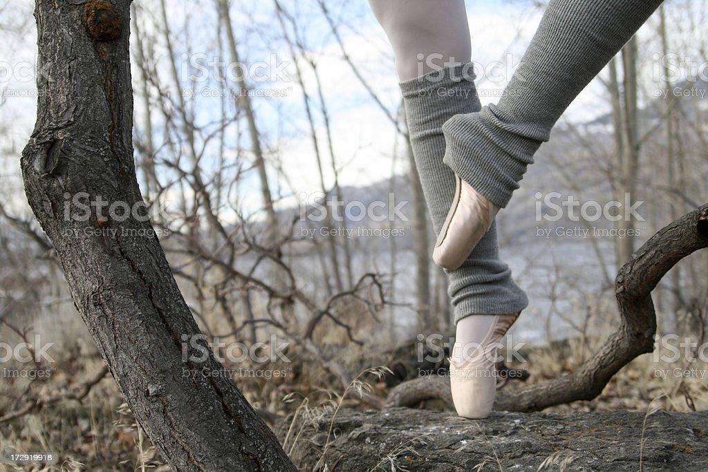 Ballerina in den Bäumen – Foto