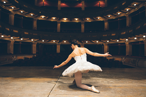 Ballerinas Life