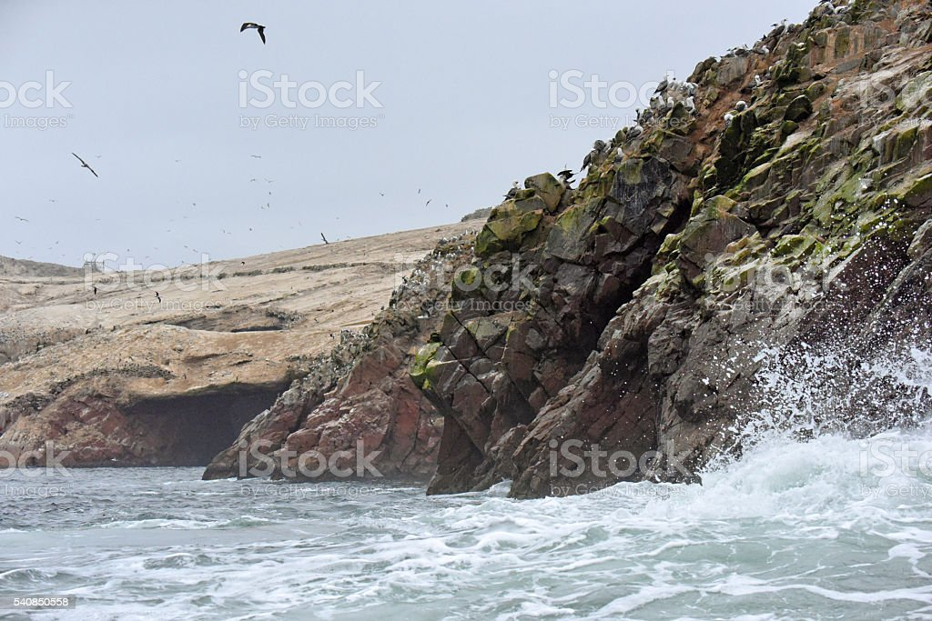 Isla Ballestas - Paracas National Park stock photo