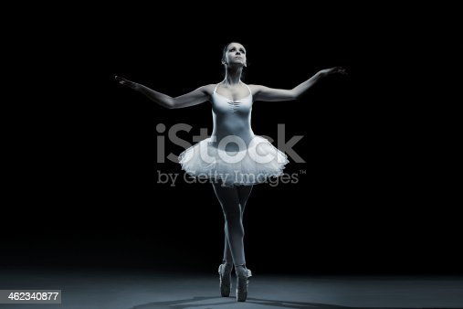461209029 istock photo Ballet dancer-action 462340877
