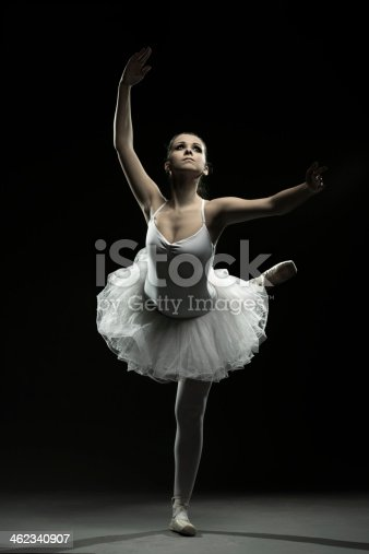 461209029 istock photo Ballet dancer-action 462340907