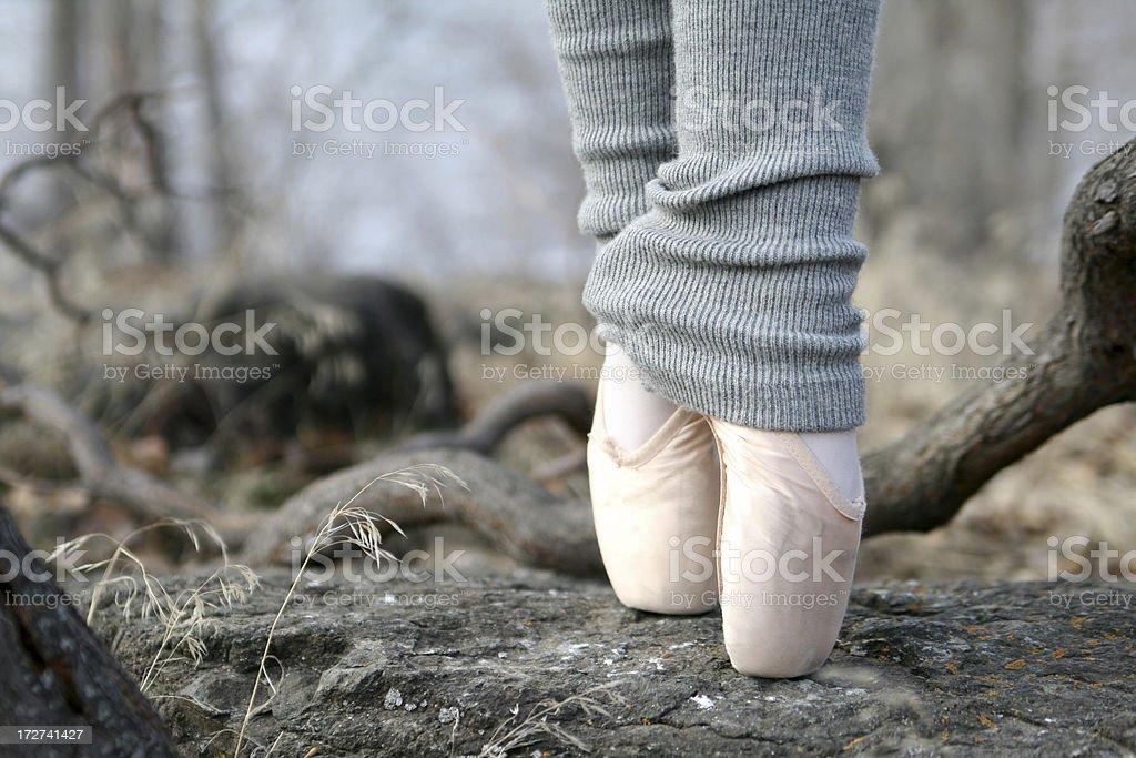 Ballett on the Rocks – Foto