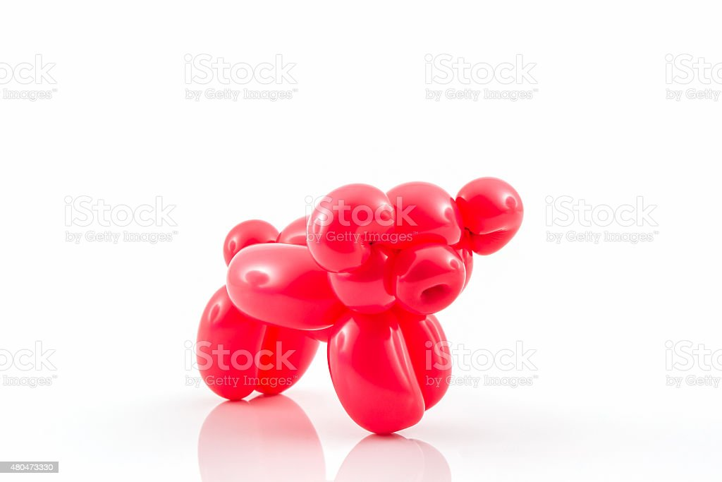 Balloon animal of red pig. stock photo