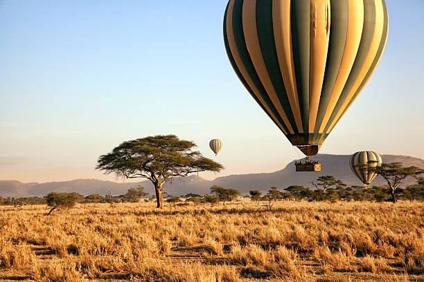 balloon ride over the serengeti, tanzania - safari stock photos and pictures
