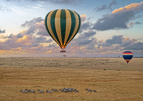 Balloon safari Hot air balloon safari flight at the time of Great Migration in the magnificent setting of the Great Rift Valley in Kenya masai mara national reserve stock pictures, royalty-free photos & images