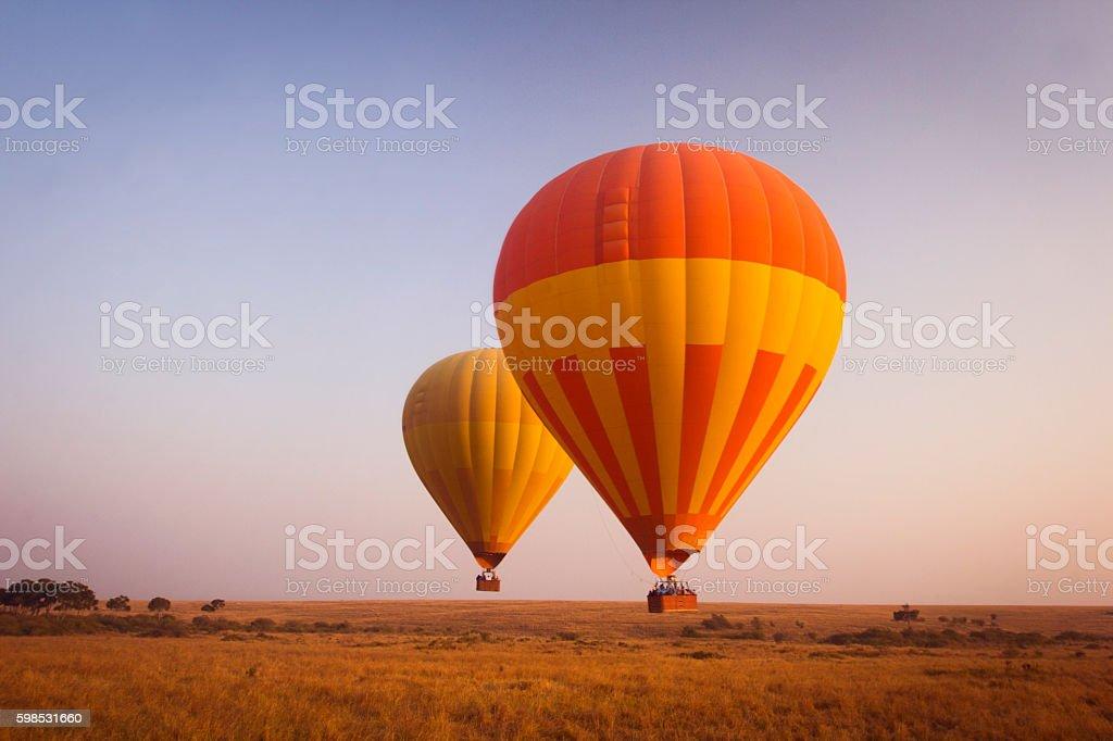 Balloon safari photo libre de droits