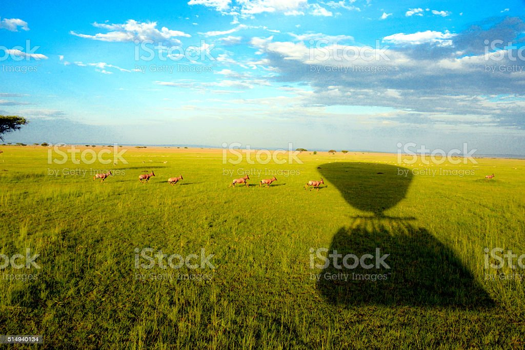 Balloon Shadow over the Masai Mara stock photo