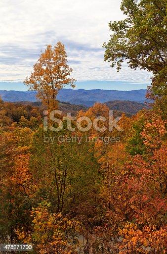 istock Balsam Mountain 478271700
