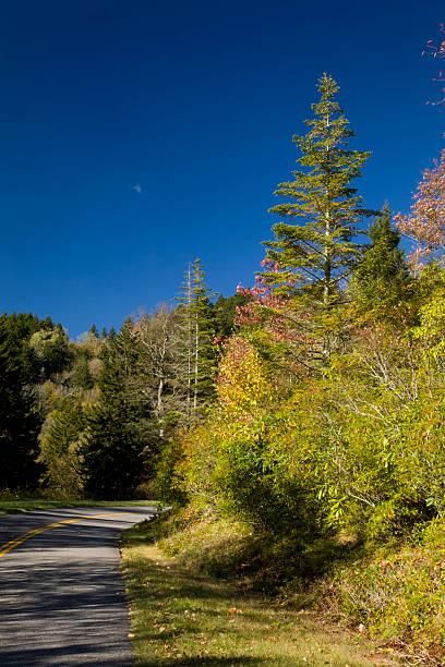Balsam Mtn Area, Autumn stock photo