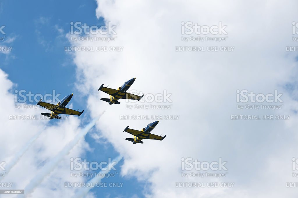 Goraszka, Poland - June 13, 2010: Baltic Bees Jet Team stock photo