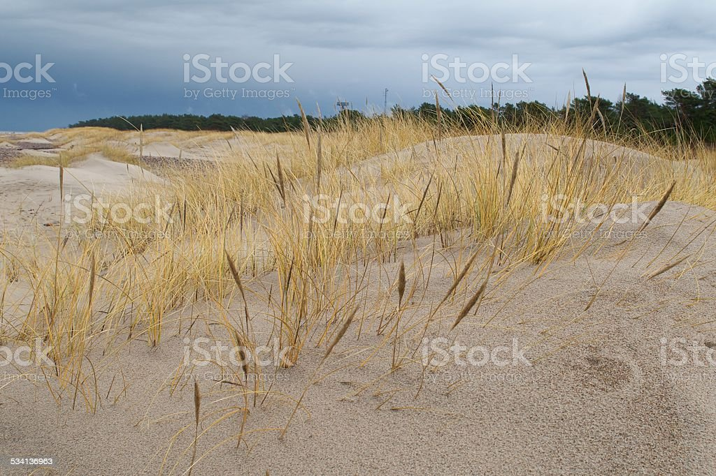 Baltic Sea beach stock photo