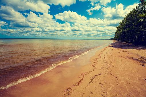 Baltic sea coast. Deserted wild beach