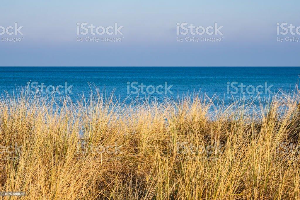 Ostseeküste in Graal-Müritz, Deutschland – Foto