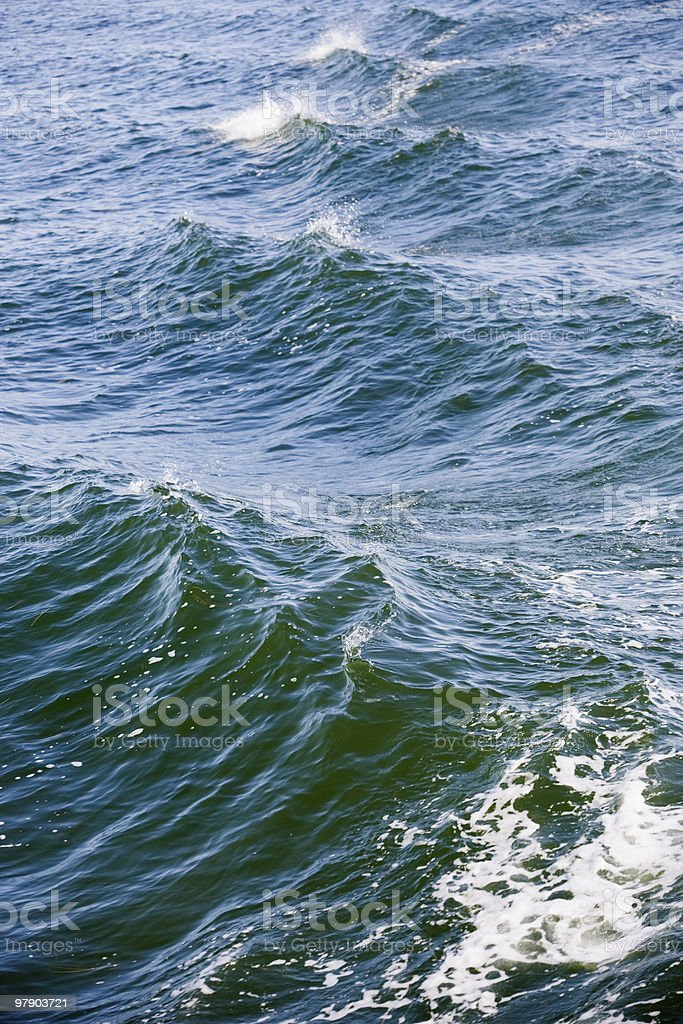 Baltic sea colors royalty-free stock photo