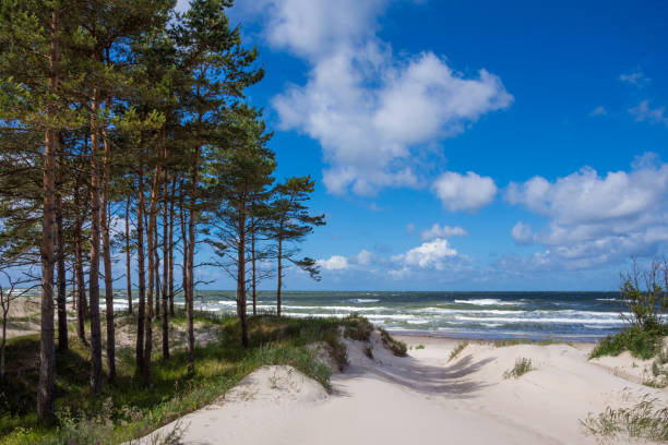 Baltic sea shore in Latvia stock photo