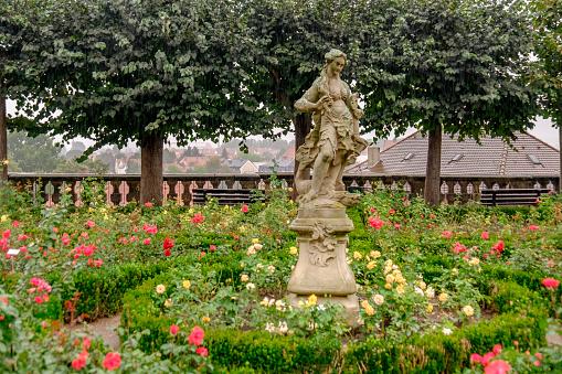 Bamberg, Rose Garden at the Neue Residenz (Bavaria, Germany)