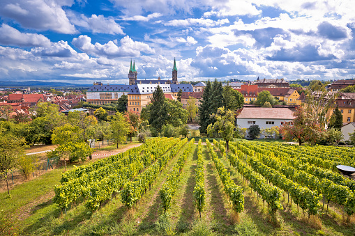 Bamberg. Town of Bamberg view from Michaelsberg vineyards to Bamberger dom square,